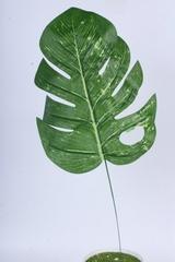 Искусственное растение - Лист Монстеры, 1 шт.