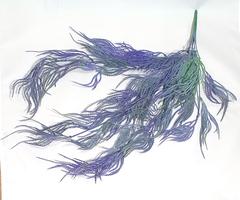 Трава свисающая (ампельная) искусственная, 65 см.