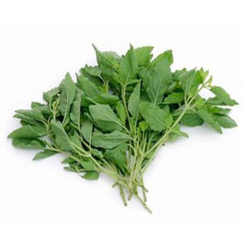 https://static-sl.insales.ru/images/products/1/4616/55439880/holy_basil.jpg