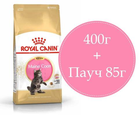 ПРОМО! Royal Canin Kitten Maine Coon корм для котят породы мейн-кун 400г + пауч 85г
