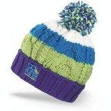 Картинка шапка Dakine Chance Blue -