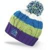 Картинка шапка Dakine Chance Blue - 1