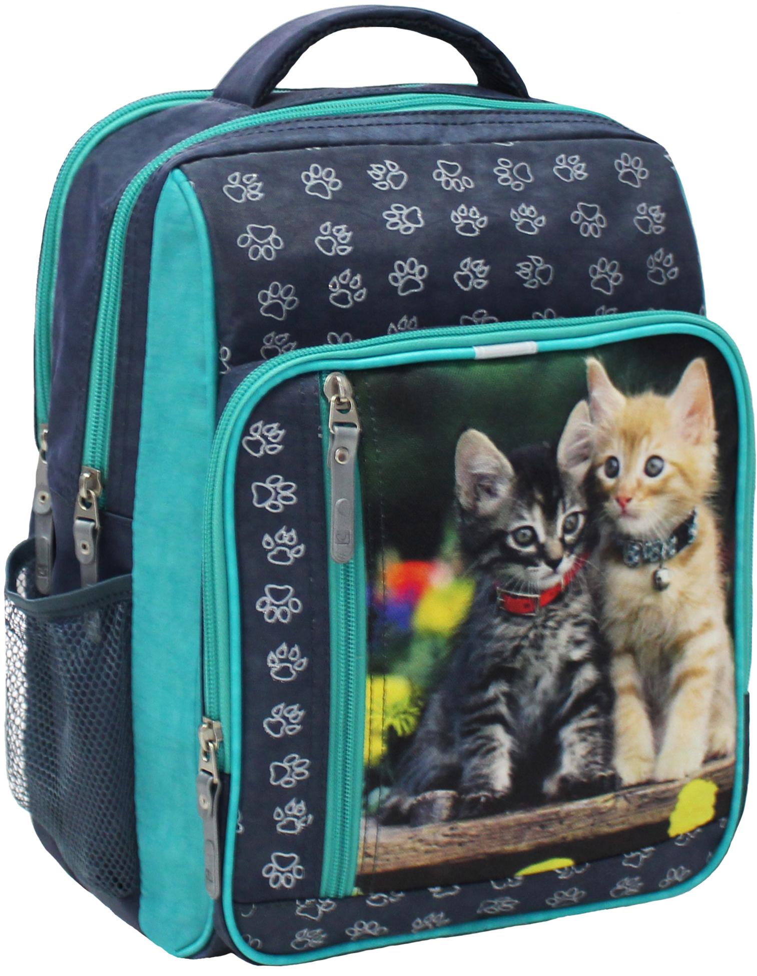 Школьные рюкзаки Рюкзак школьный Bagland Школьник 8 л. 321 сiрий 143 д (00112702) IMG_5312.JPG
