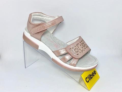 Clibee Z603
