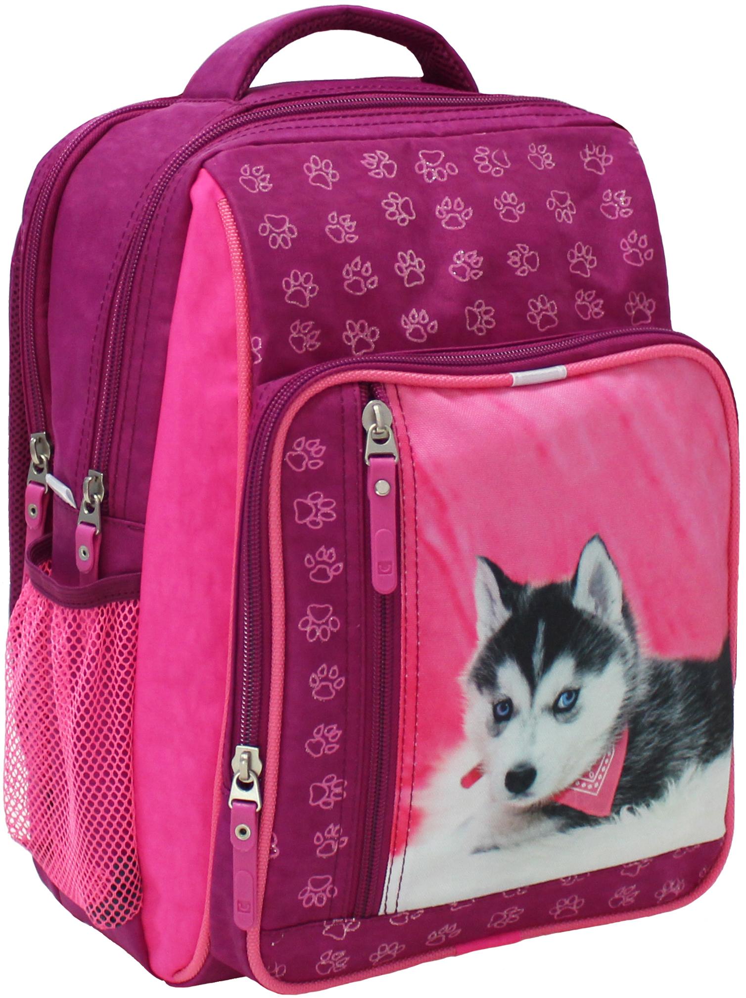 Школьные рюкзаки Рюкзак школьный Bagland Школьник 8 л. 143 малина 141 д (00112702) IMG_5303.JPG