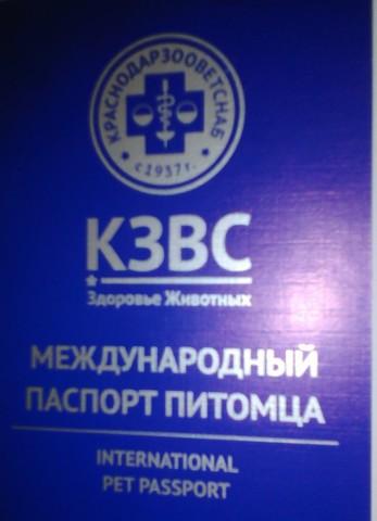 Международный ветеринарный паспорт компании КЗВС
