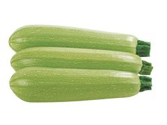 Ардендо 174 F1 семена кабачка (Enza Zaden / Энза Заден)