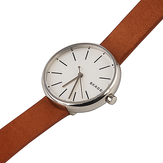 Часы наручные Skagen SKW2594