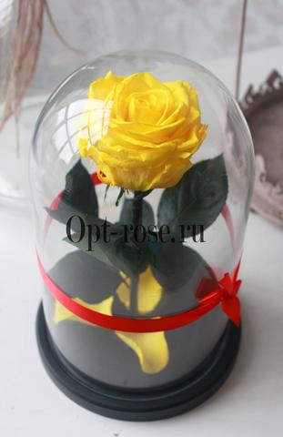 Роза в колбе Premium Оптом(Выс*Диам*Бутон 27*15*7-8см)Цвет желтая