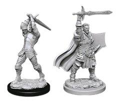 D&D Nolzur's Marvelous Miniatures - Male Human Paladin