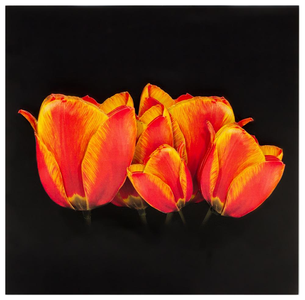 Папертоль Солнечные тюльпаны — готовая работа, вид спереди.