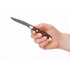 Нож Boker 112545DAM Trapper Classic