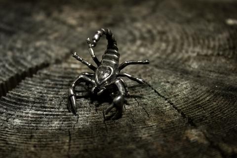 талисман Пустынный Скорпион