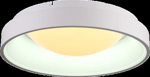 INL-9399C-71 White