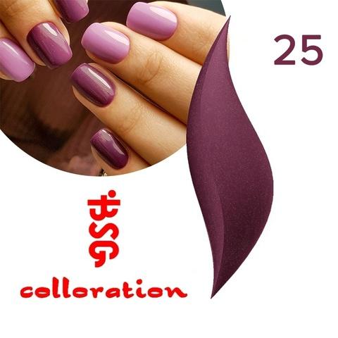 BSG Colloration, №25 Фиолетовый с золотым шимером купить за 650руб