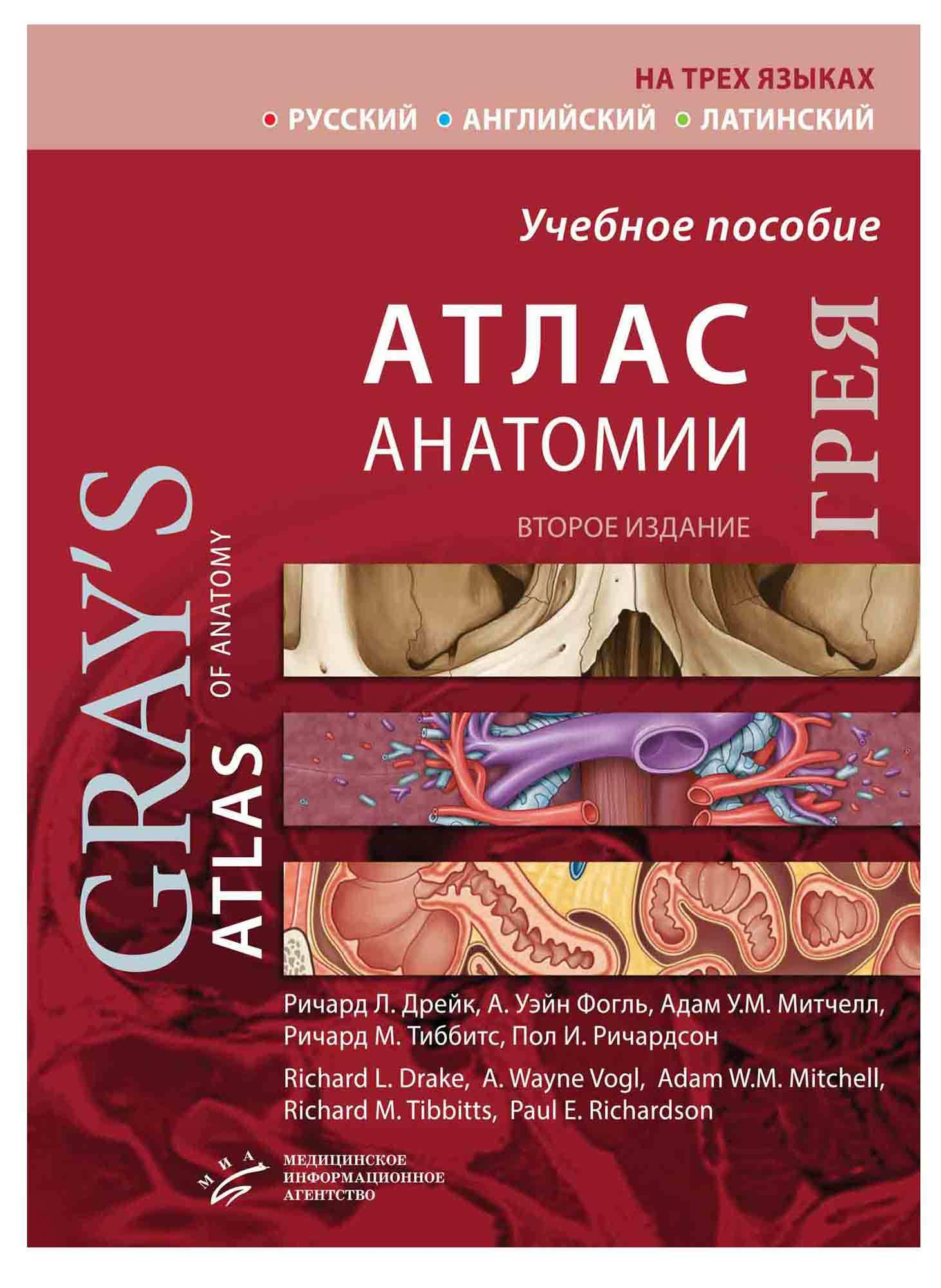 Книги по мануальной терапии Атлас анатомии Грея (Грэя)(на трех языках) grey2020.jpg