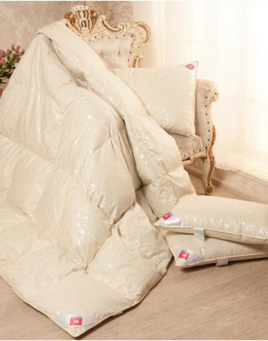 Одеяло пуховое зимнее Камелия 200х220