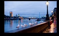 """Постер """"Дождливый Лондон"""""""
