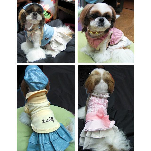 юбки для собак