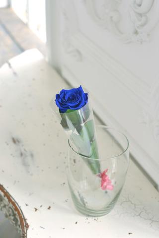 Роза на стебле Premium Оптом Высота*Бутон (37см*5-6см) Цвет синий