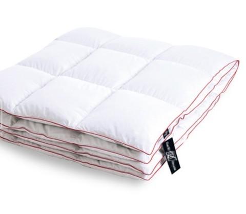 Одеяло пуховое летнее Desire 172х205