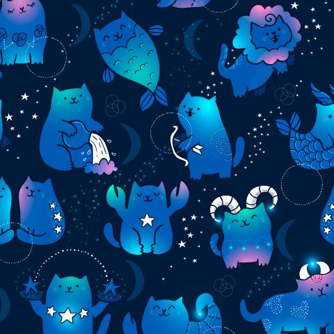 Коты зодиаки. Астрология.