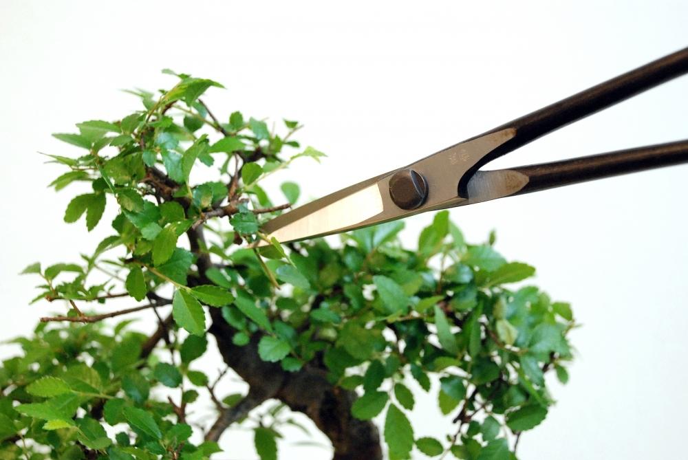 Ножницы для бонсай Okatsune 206, 220/55 мм