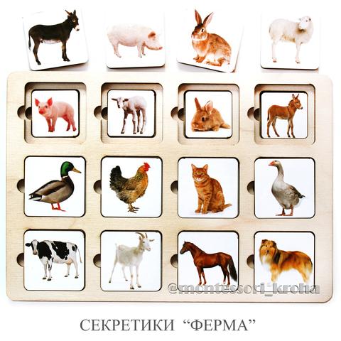 СЕКРЕТИКИ «ФЕРМА»