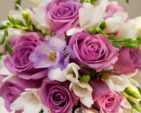 Алмазная Мозаика 50x65 Букет роз вблизи