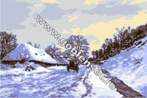 G-895 Нонфиер зимой
