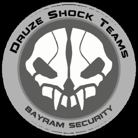 Значок Druze shock team Bayram Security