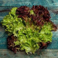 Салат красный «Лолло Росса» / 250 гр