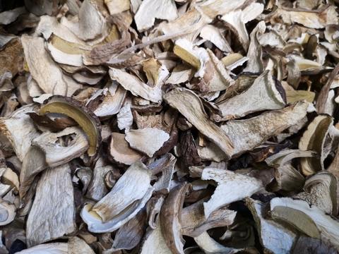 Гриб белый сушеный (Алтай) 50 гр 2 сорт