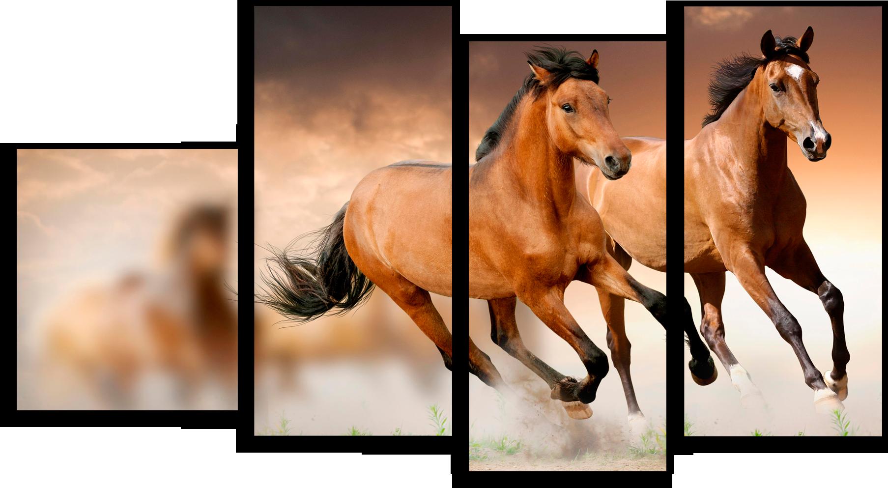 """Животные Модульная картина """"Бегущие лошади"""" М239.png"""
