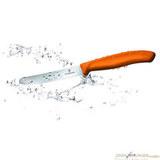 Нож для кухни Victorinox 110 мм оранжевый (6.7836.L119)