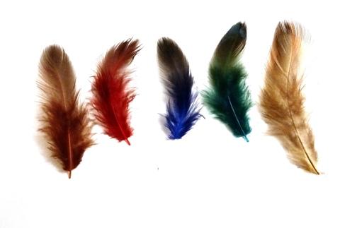 Перья натуральные, около 5-12 см. с однотонным кончком, 20 шт. (выбрать цвет)