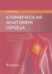 Клиническая анатомия сердца
