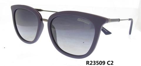 R23509C2