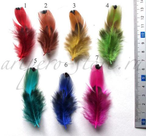 Перья натуральные, около 5-12 см., 20 шт. (выбрать цвет)