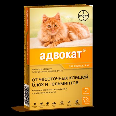 Адвокат для кошек до 4 кг