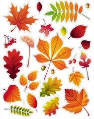 Наклейки ПВХ Осень, 24 предм.
