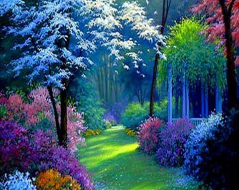 Алмазная Мозаика 50x65 Лучи солнца пробиваются в лесу