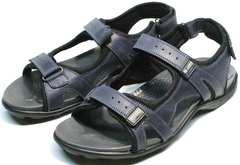 Удобные сандали кожаные мужские Mi Lord 2066EKO Blue.