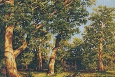 Алмазная Мозаика 20x30 Деревья под солнцем (арт. JS20592 )