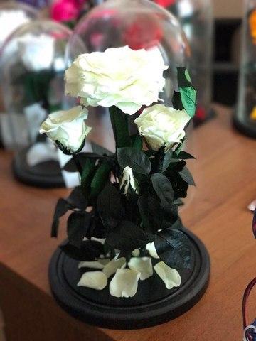 Вечная роза в стеклянной колбе (Элит)