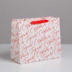 Пакет ламинированный горизонтальный «С Новым годом!», ML 27 × 23 × 11,5 см, 1 шт.