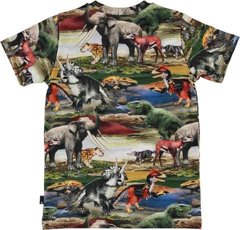 Molo Ralphie Ancient World футболка для мальчика