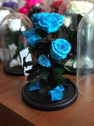 Вечная роза в стеклянной колбе куст голубая. Букет.