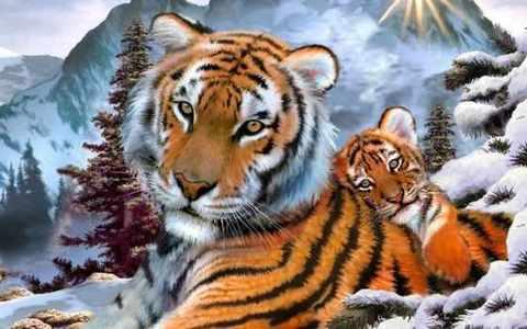 Алмазная Мозаика 20x30 Тигрица с тигренком на снегу (арт. JS20400 )