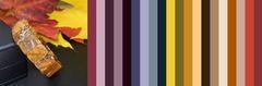 с чем носить коричневый янтарь, бурый - примерная цветовая палитра для одежды